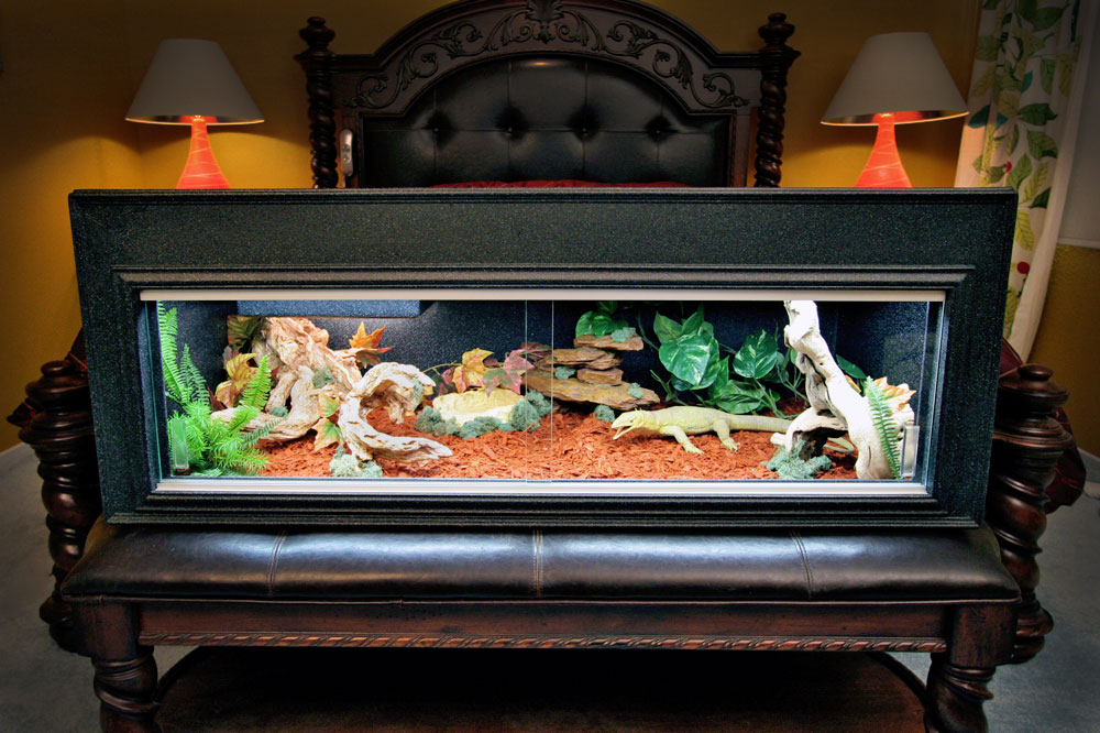 showcase cages? • Bearded Dragon . org  showcase cages?...