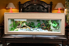 Reptile Cage Snake Cages Iguana Cages Bearded Dragon