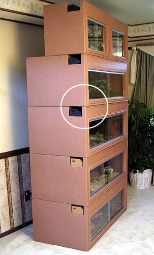 Bearded Dragon Cage Plastic Cage Reptile Supplies
