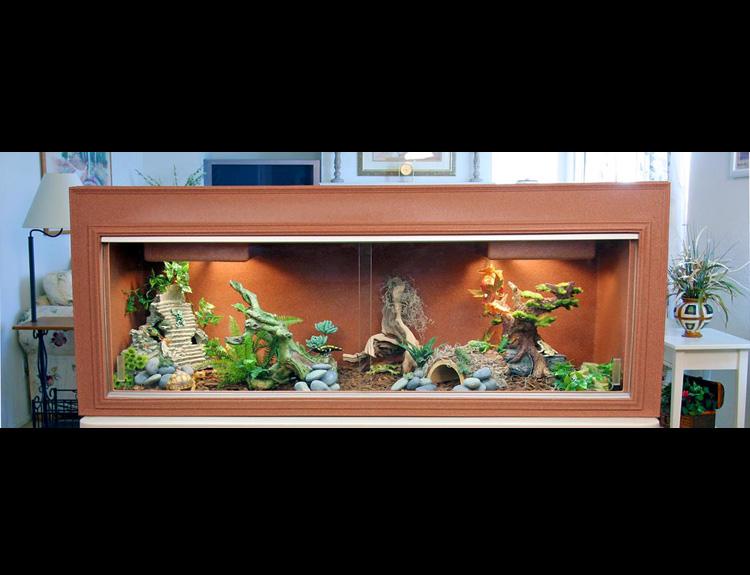 Iguana Cage Bearded Dragon Cage Plastic Cage Reptile