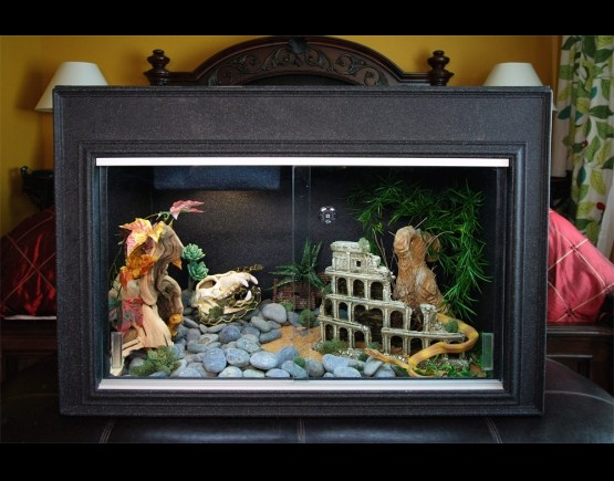 Reptile Cages - Bearded Dragon cage - Snake cage - Cage